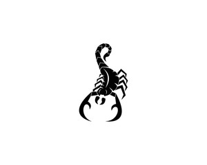 Scorpion logo design vector