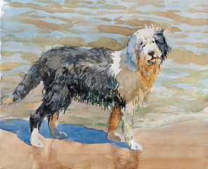 Watercolor image of black white dog playing sand on the beach. Watercolor concept. Animal concept. Pets concept