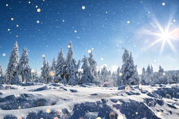 wintertime landschaft tannen