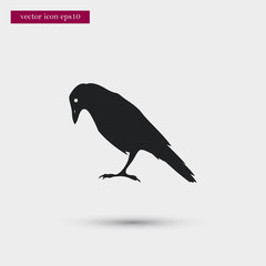 Raven icon simple vector sign