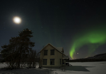 Idyllic view of aurora borealis over house by tree at night