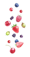 Hand drawn watercolor illustration of the different flying berries: Blueberry, blackberry, raspberry, strawberry, gooseberry isolated on the white background.