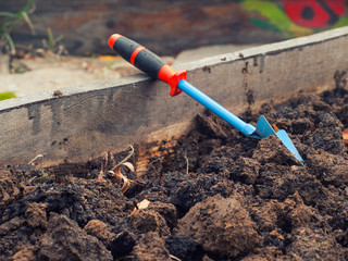 Trowel, garden tool
