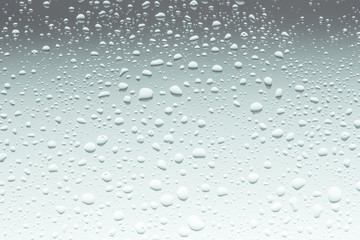 Water Drops, Close Up