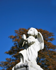 angel in pray