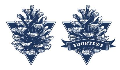 Pine cone - hand drawn vector illustration