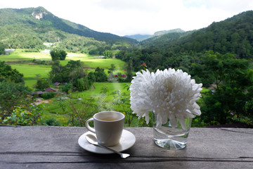 Hot coffee in green nature background.
