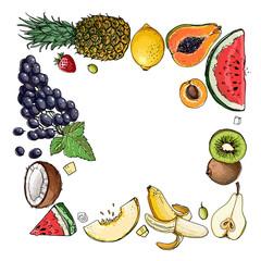 Square of fruit. Fresh food. Pineapple, avocado, papaya, apricot, mango, grape, Watermelon, cantaloupe, pomegranate, apricot, persimmon line drawn on a white