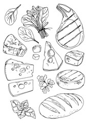 Food drawn by a line on a white background. Products. Spinach, pork steak, cheese, brie cheese, parsley, basil, bread