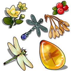 Keychain dragonfly, insect amber, flower and red berry. Natural set os six icons isolated on white background. Vector illustration in cartoon style