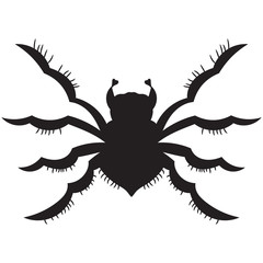 black spider. silhouette. vector illustration. Drawing by hand.