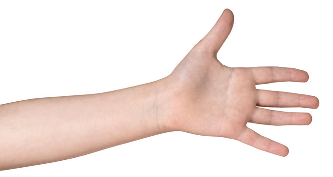 The left hand of the child, isolated on a white background