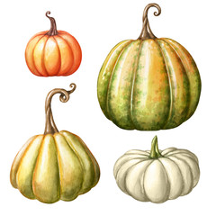 watercolor pumpkins, autumn harvest illustration set, Thanksgiving design elements, fall, holiday clip art isolated on white background