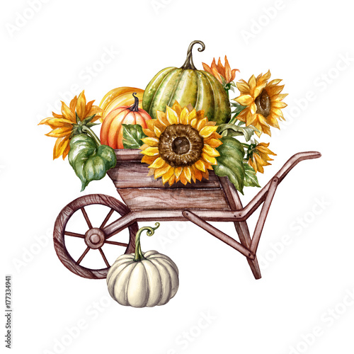 Watercolor Pumpkins In The Wheelbarrow Sunflowers Thanksgiving Farm Harvest Halloween Illustration