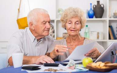 Smiling senior couple counting home finances