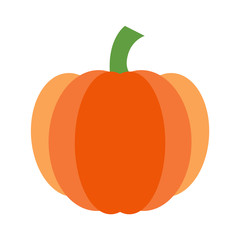Isolated Pumpkin Vector Illustration on White Background 1