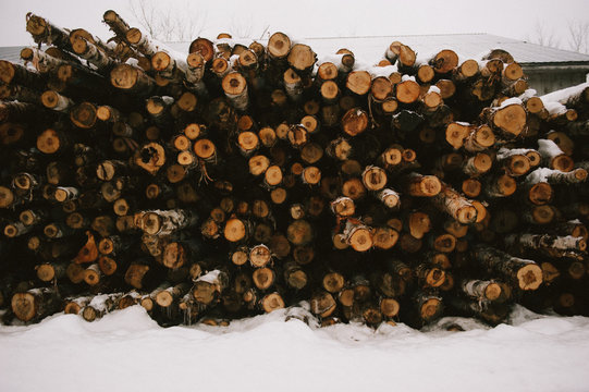 Pile of wood logs at lumber mill in rural Vermont