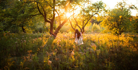 Young wanderer explores a New England meadow