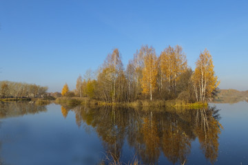 Autumn landscape. Trees with yellow leaves reflected in the water of the lake.