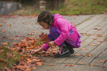 Little Girl Playing With Fall Leaves