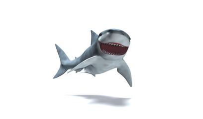 Photos illustrations et vid os de squale - Requin rigolo ...