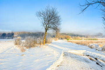 Winter landscape with snow on road in countryside and blue sky over forest in the morning fog, white christmas concept