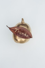 Golden pumpkin with a leaf, ornament for thanksgiving