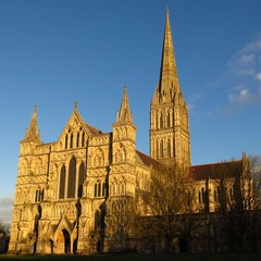 Salisbury Cathedral England in golden sunlight