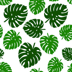 Palm seamless pattern. Monstera leaves. Tropical leaves seamless background