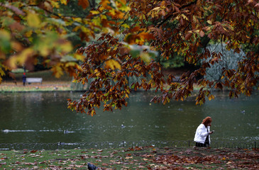 A woman takes a photograph amongst the autumn leaves in St. James's Park in London