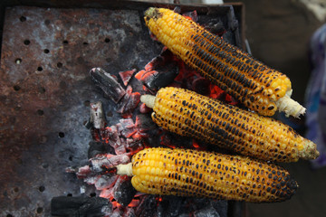Fresh roasted or grilled corncobs. Grilled Corn for sale on the street.