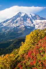 Autumn color at Mount Rainier