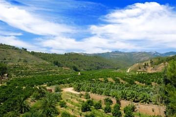 terraced farm valley along Via Verda in Catalonia, Spain on sunny day