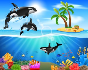 Cartoon killer whale jumping in blue ocean background. vector illustration
