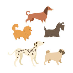 Cartoon puppy illustration set