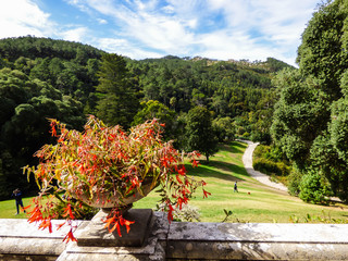 Beautiful garden at Monserrate Park and Palace in Sintra, Portugal