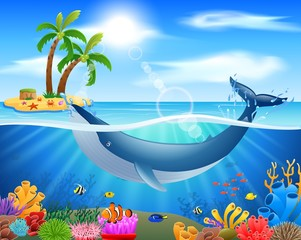 Cartoon whale in blue ocean background. vector illustration