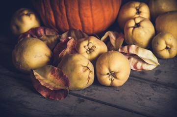 Herbstliches Stillleben mit Kürbis und Quitten