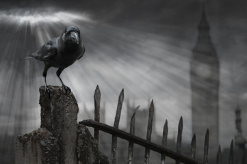 Crow in London with stormy background