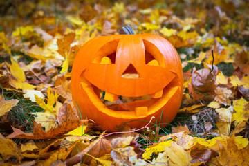 Funny halloween pumpkin on autumnal leaves