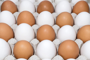 Brown and white chicken eggs in a tray