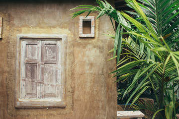 Cute window frame and brown wall with palm leaves