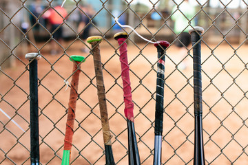 Baseball bats on the fence