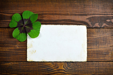 Lucky clover and blank greeting card on wooden background
