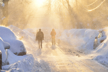 Snow Storm In City Street