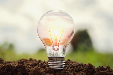 light bulb growing in soil concept idea power energy in nature