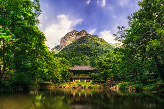 Baegyangsa temple in summer