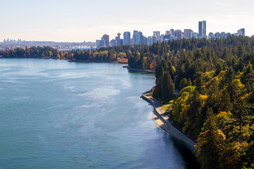 Wall Mural - Stanley Park and Pacific Ocean