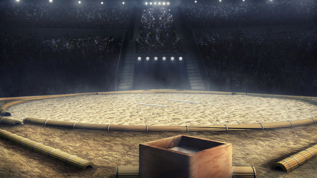 sumo professional arena in lights 3d rendering