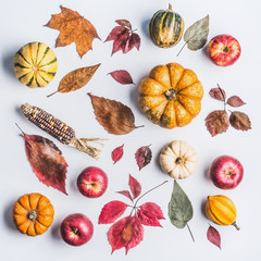 Autumn composing with pumpkin,corn , apples and leaves on light background, top view. Fall pattern made of natural organic farm products. Flat lay